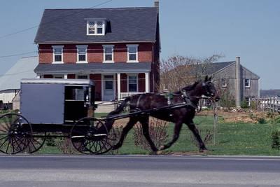 Amish parents die, 8 children hurt after horse-drawn buggy crash in Virginia