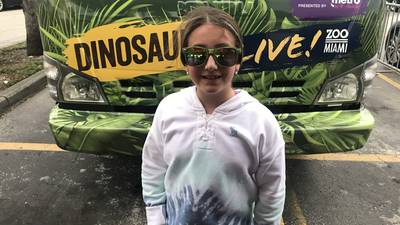 Zoo Dino