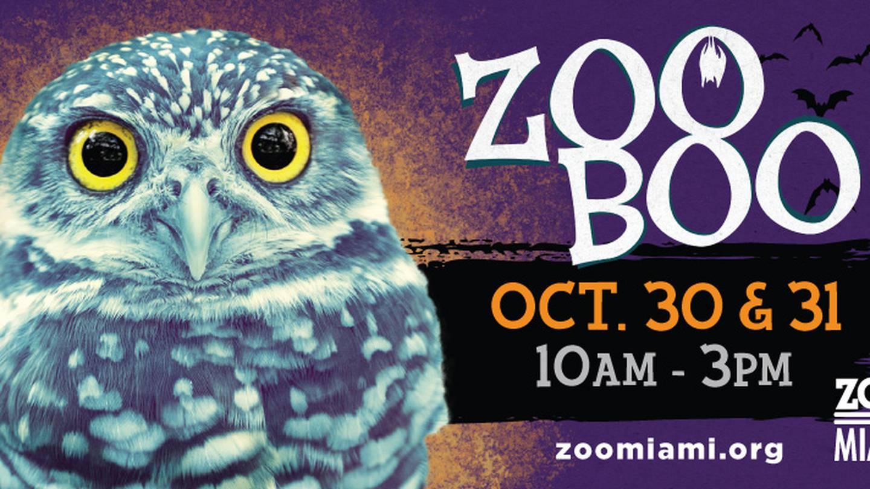 Win tickets to Zoo Boo!